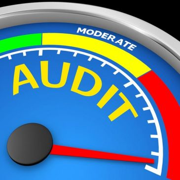 What You Need to Know if You're Being Audited